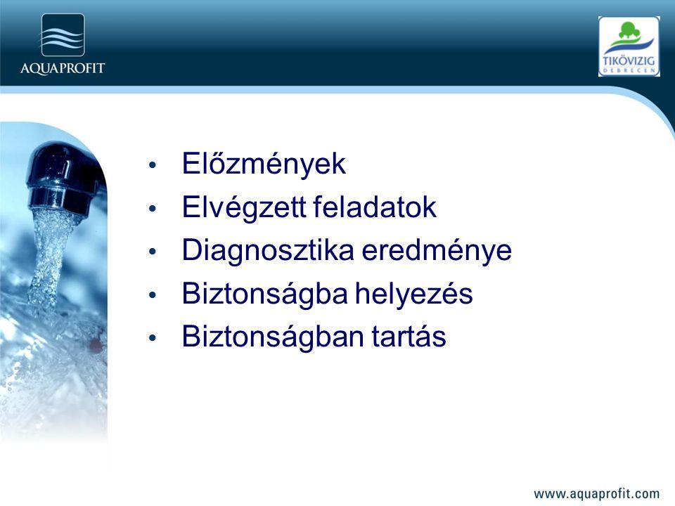 • Előzmények • Elvégzett feladatok • Diagnosztika eredménye • Biztonságba helyezés • Biztonságban tartás