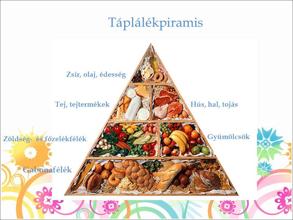 Táplálékpiramis Zsír, olaj, édesség Hús, hal, tojás Gyümölcsök Tej, tejtermékek Zöldség- és főzelékfélék Gabonafélék