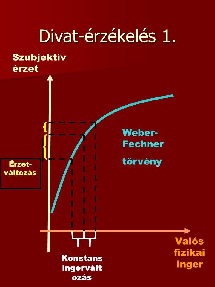 Divat-érzékelés 1. Szubjektív érzet Valós fizikai inger Érzet- változás Konstans ingervált ozás Weber- Fechner törvény