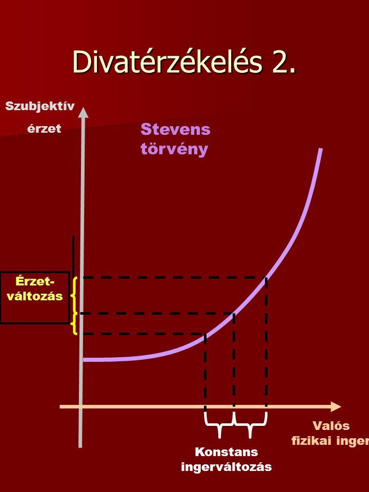 Divatérzékelés 2.