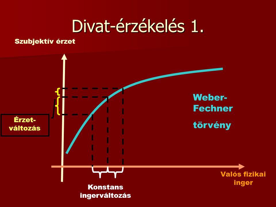 Divat-érzékelés 1. Szubjektív érzet Valós fizikai inger Érzet- változás Konstans ingerváltozás Weber- Fechner törvény