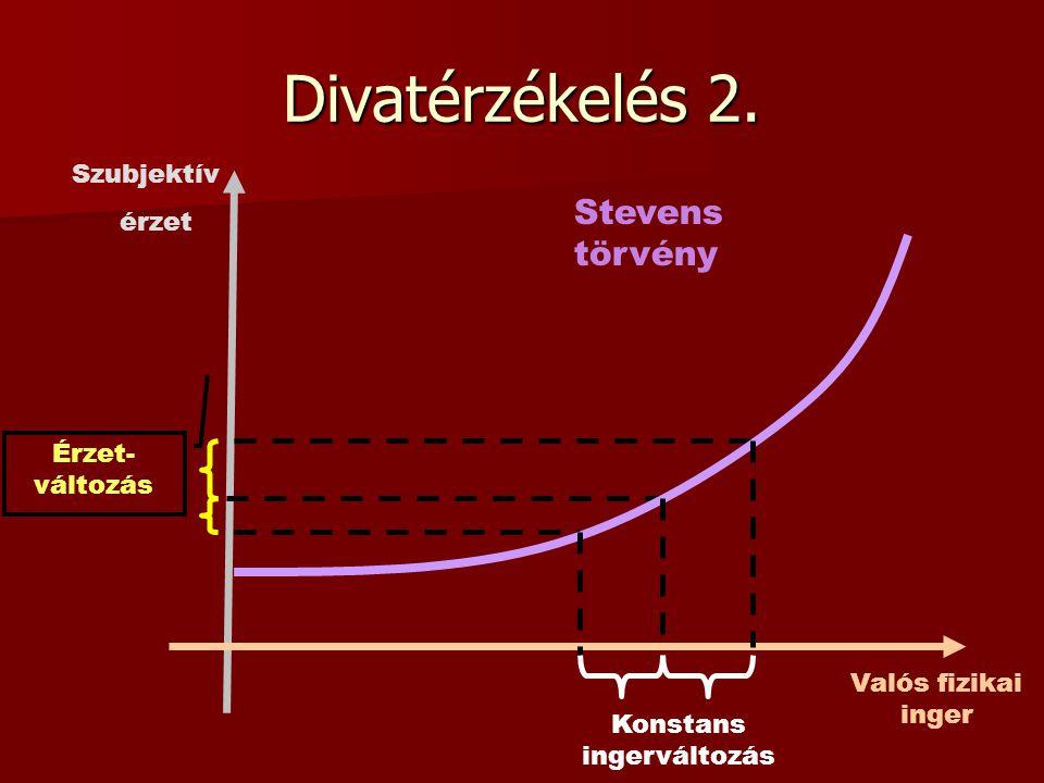 Divatérzékelés 2. Valós fizikai inger Konstans ingerváltozás Stevens törvény Szubjektív érzet Érzet- változás