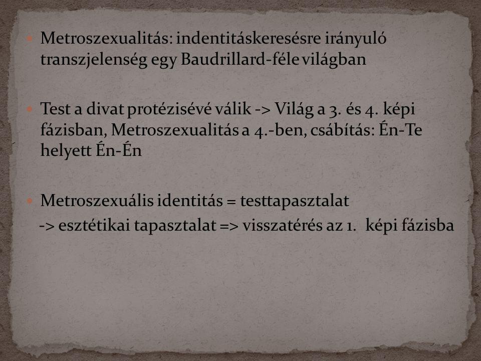  Metroszexualitás: indentitáskeresésre irányuló transzjelenség egy Baudrillard-féle világban  Test a divat protézisévé válik -> Világ a 3.