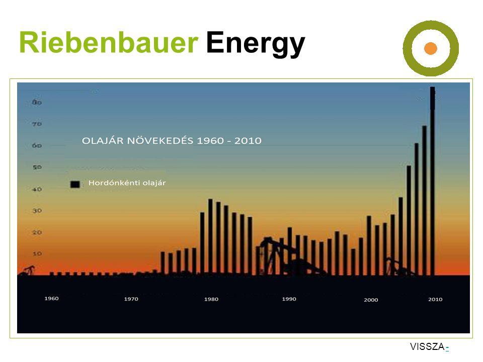 •Gyömrői fűtőmű •Teljesítmény: 1,5 MW •Rácsatlakozások : 9 átvevő, Idősek Otthona •800 méter távvezeték Riebenbauer Energy Megújuló energiák mérnökirodája Ing.
