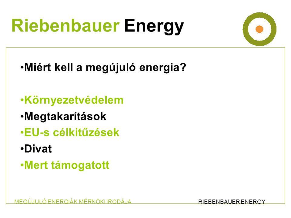 •Szegvári Biomassza fűtőmű •Teljesítmény: 1,8 MW •Szegvár Nagyközség ellátása •29 Rácsatlakozó •1200 méter távvezeték Riebenbauer Energy Megújuló energiák mérnökirodája Ing.