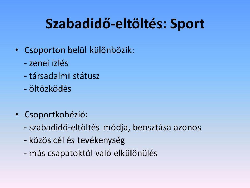 Szabadidő-eltöltés: Sport • Csoporton belül különbözik: - zenei ízlés - társadalmi státusz - öltözködés • Csoportkohézió: - szabadidő-eltöltés módja, beosztása azonos - közös cél és tevékenység - más csapatoktól való elkülönülés