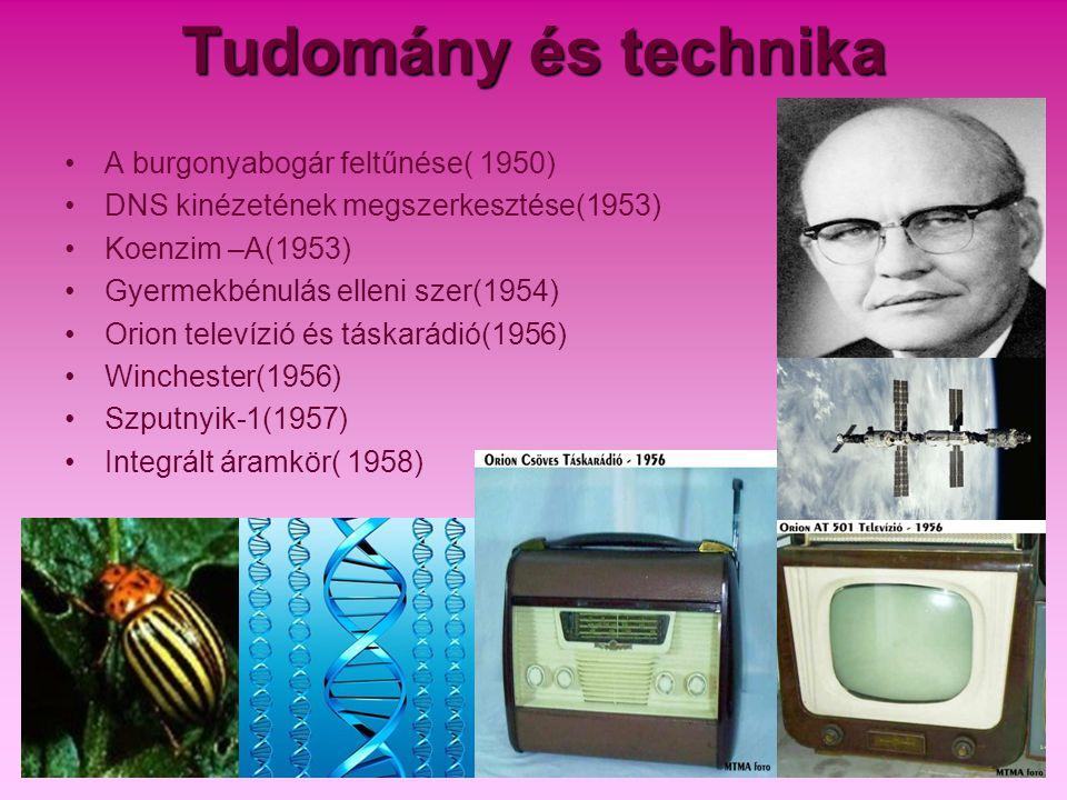 Tudomány és technika •A burgonyabogár feltűnése( 1950) •DNS kinézetének megszerkesztése(1953) •Koenzim –A(1953) •Gyermekbénulás elleni szer(1954) •Ori