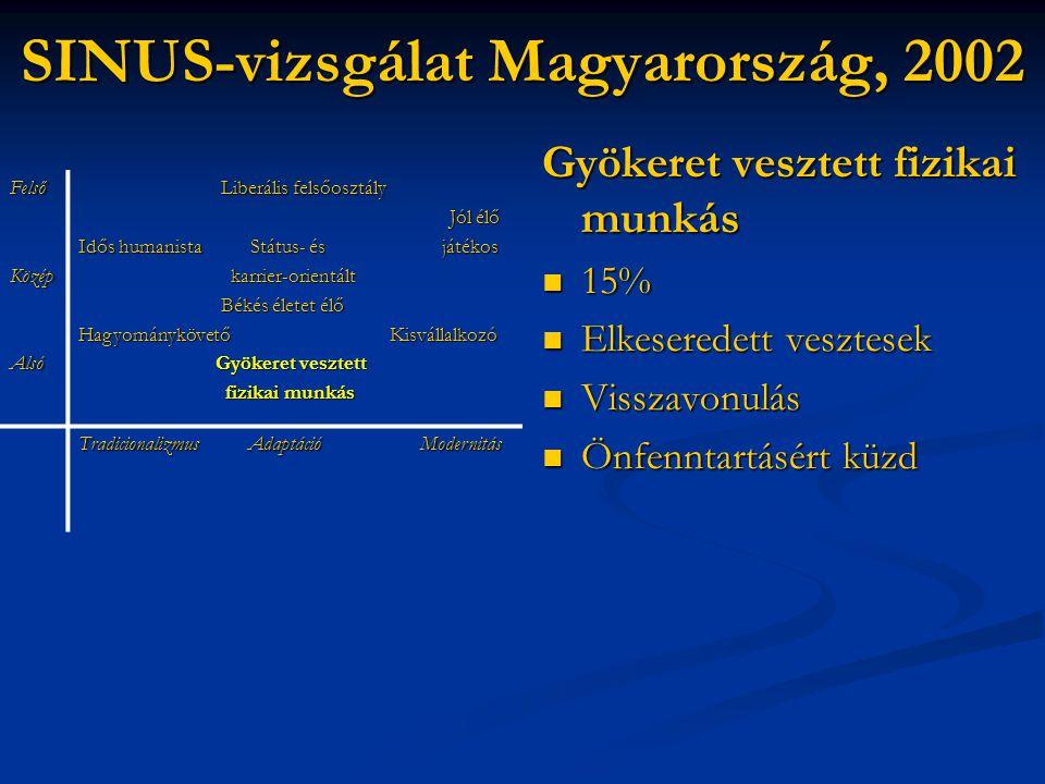 SINUS-vizsgálat Magyarország, 2002 Gyökeret vesztett fizikai munkás  15%  Elkeseredett vesztesek  Visszavonulás  Önfenntartásért küzd FelsőKözépAl