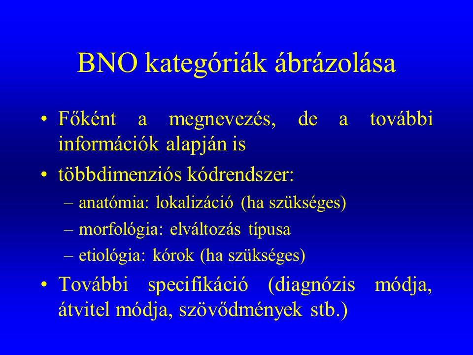 BNO kategóriák ábrázolása •Főként a megnevezés, de a további információk alapján is •többdimenziós kódrendszer: –anatómia: lokalizáció (ha szükséges)