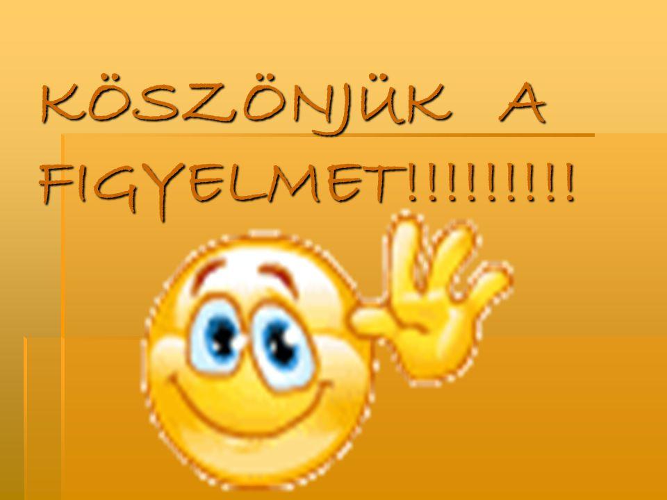 KÖSZÖNJÜK A FIGYELMET!!!!!!!!!
