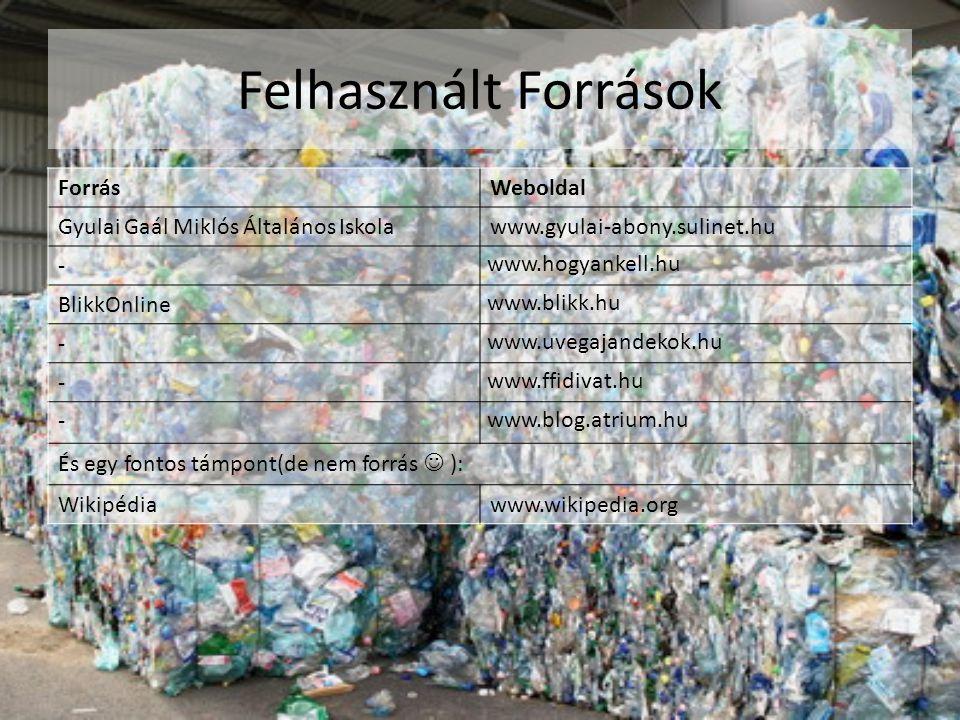 Felhasznált Források ForrásWeboldal Gyulai Gaál Miklós Általános Iskolawww.gyulai-abony.sulinet.hu - www.hogyankell.hu BlikkOnline www.blikk.hu - www.uvegajandekok.hu - www.ffidivat.hu - www.blog.atrium.hu És egy fontos támpont(de nem forrás  ): Wikipédiawww.wikipedia.org