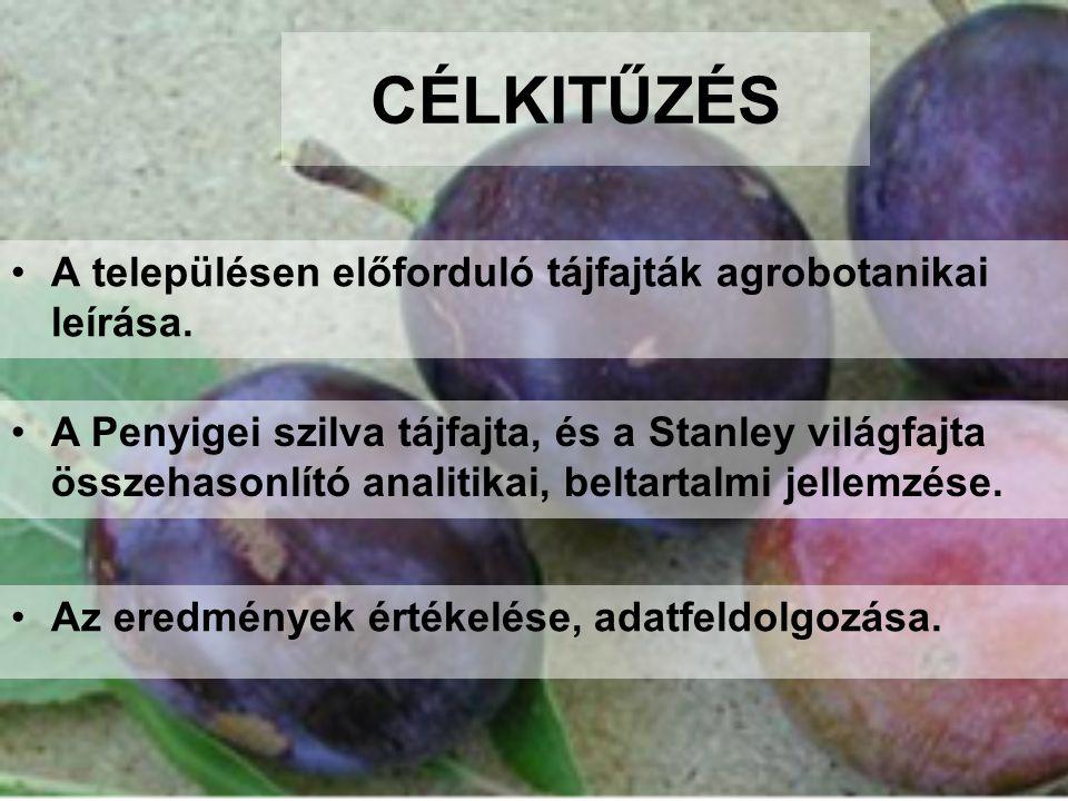 CÉLKITŰZÉS •A településen előforduló tájfajták agrobotanikai leírása. •Az eredmények értékelése, adatfeldolgozása. •A Penyigei szilva tájfajta, és a S