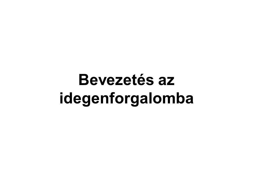 Idegenforgalmi marketing szintjei - országos - vállalati - üzleti Magyar Turizmus Rt.