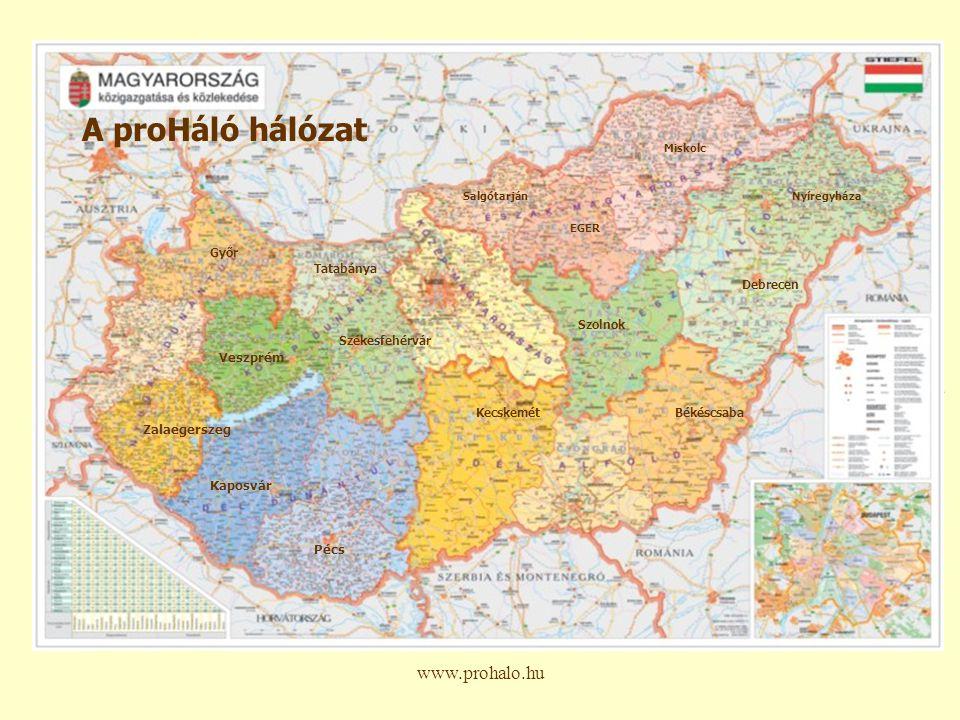www.prohalo.hu Alapító szakasz Fejlesztési szakasz Megszilárdítás és bővítés Fenntarthatóság 2003 Hálózatfejlesztési kérdések megfogalmazása és felvetése Munkacsoport alakul 2004-2005 Fókuszcsoport megbeszélések Szolgáltatók felmérése, elemzés készítés Működési alapelvek 1.