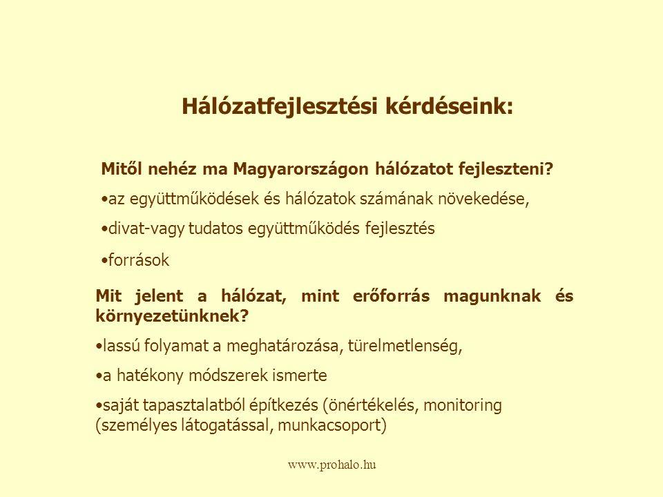 www.prohalo.hu Milyen szervezeti és egyéb tényezők hozzák a sikeres működést.