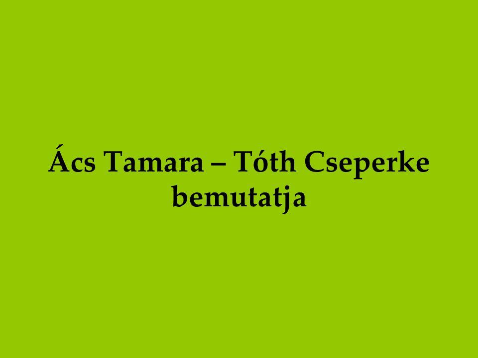 Ács Tamara – Tóth Cseperke bemutatja