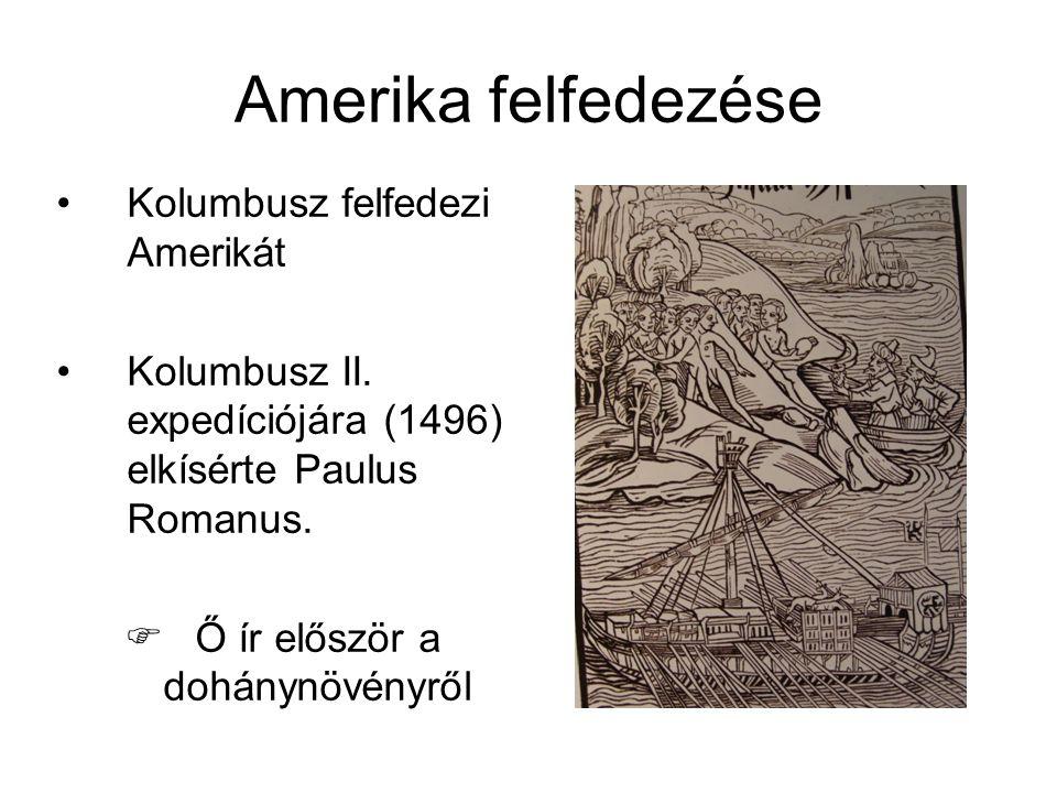 Amerika felfedezése •Kolumbusz felfedezi Amerikát •Kolumbusz II.