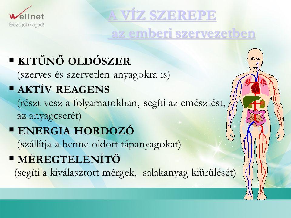 A VÍZ SZEREPE az emberi szervezetben A VÍZ SZEREPE az emberi szervezetben  KITŰNŐ OLDÓSZER (szerves és szervetlen anyagokra is)  AKTÍV REAGENS (rész