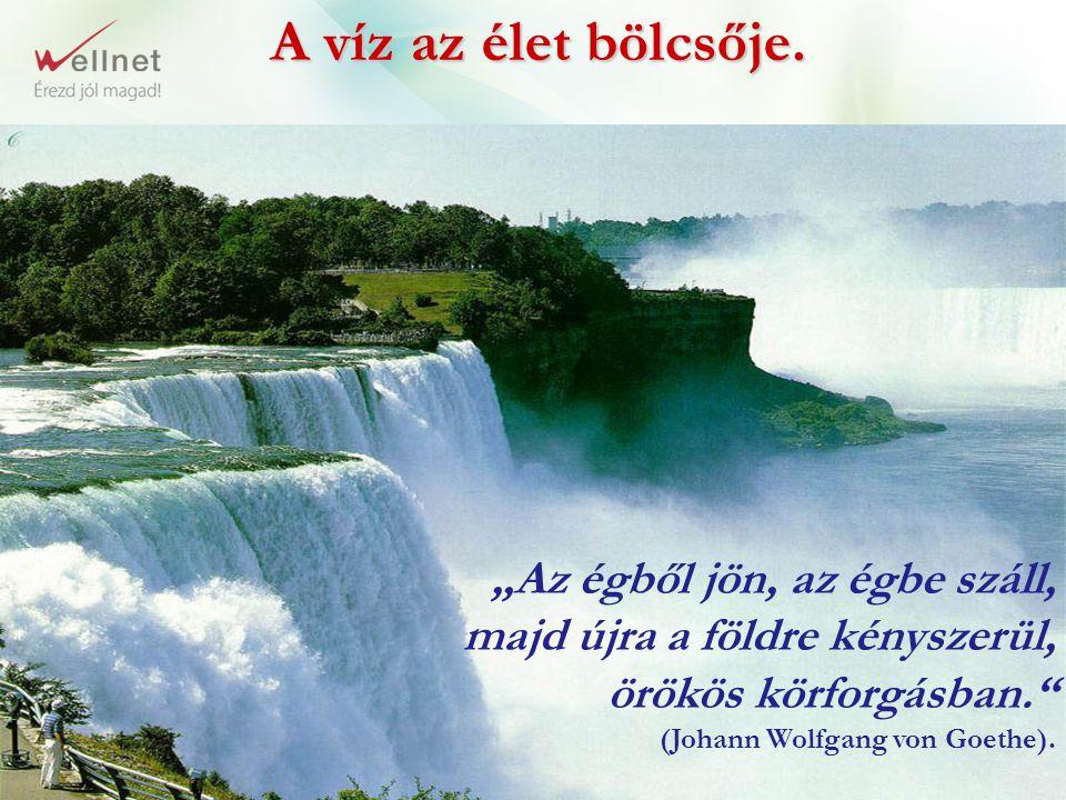 """A víz az élet bölcsője. """"Az égből jön, az égbe száll, majd újra a földre kényszerül, örökös körforgásban."""" (Johann Wolfgang von Goethe)."""