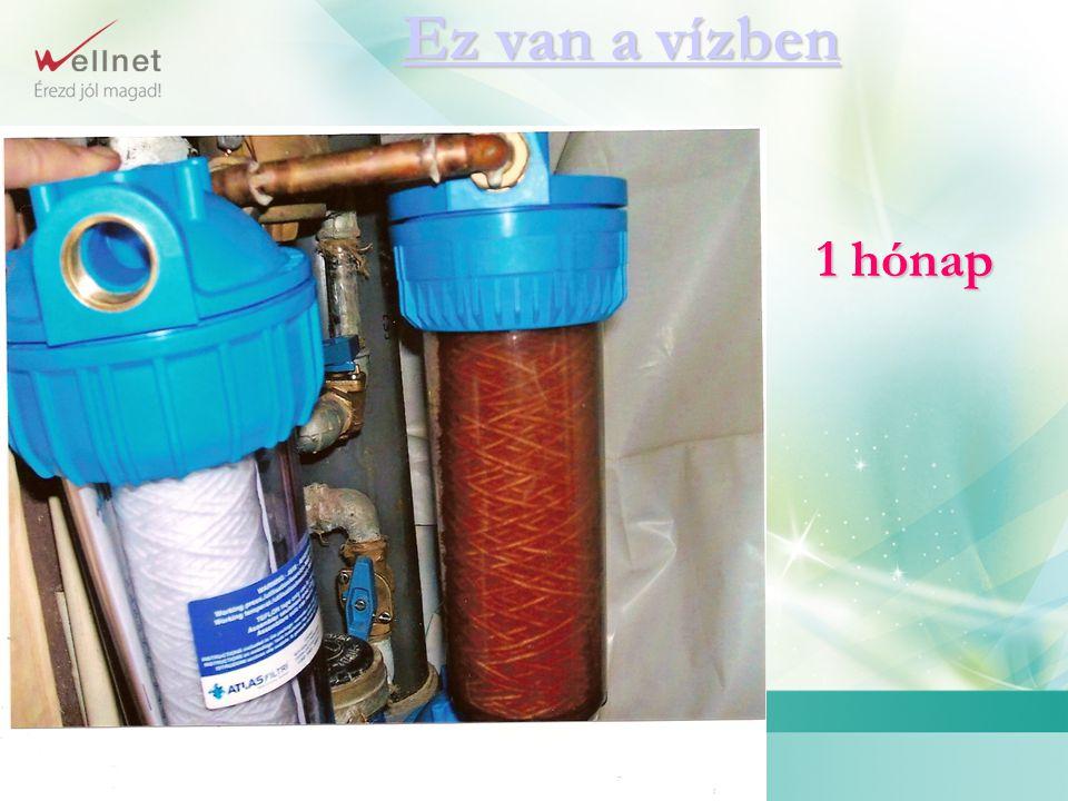 Háztartási víztisztító berendezések családja Háztartási víztisztító berendezések családja Évezredes tapasztalatok felhasználásával A mai kor műszaki színvonalán megvalósítva AKTÍVSZÉN + EZÜST + MÁGNES KDF
