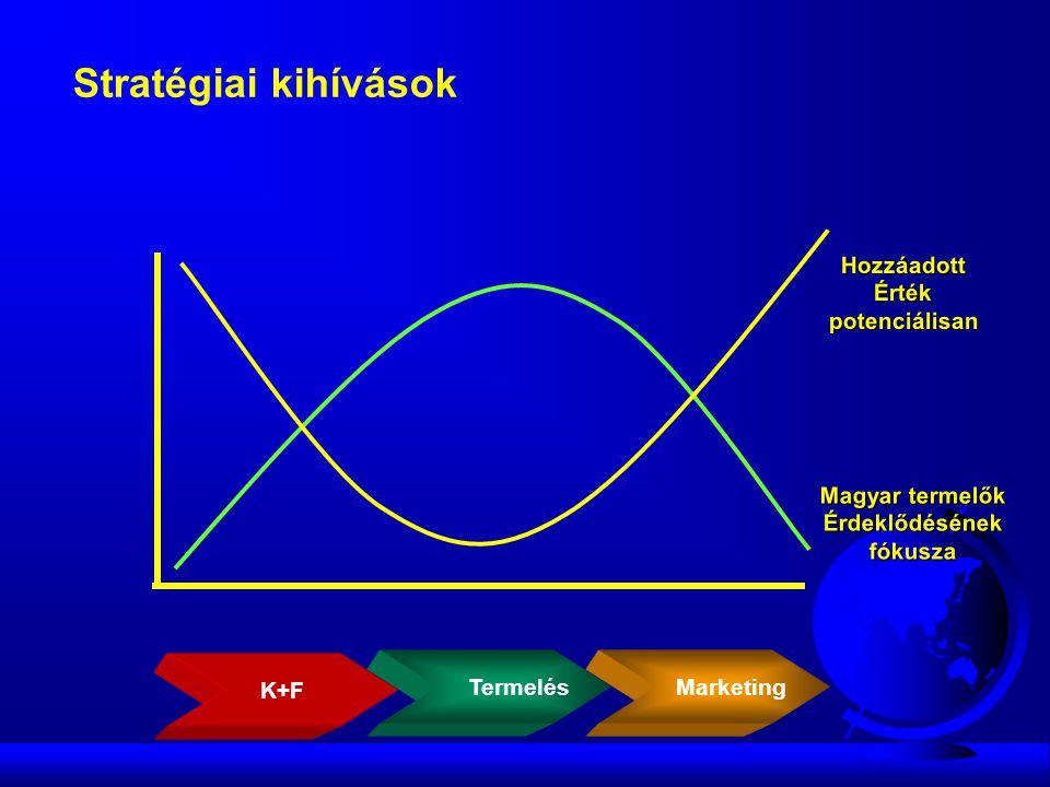 HozzáadottÉrtékpotenciálisan Magyar termelők Érdeklődésénekfókusza Stratégiai kihívások Termelés Marketing K+F
