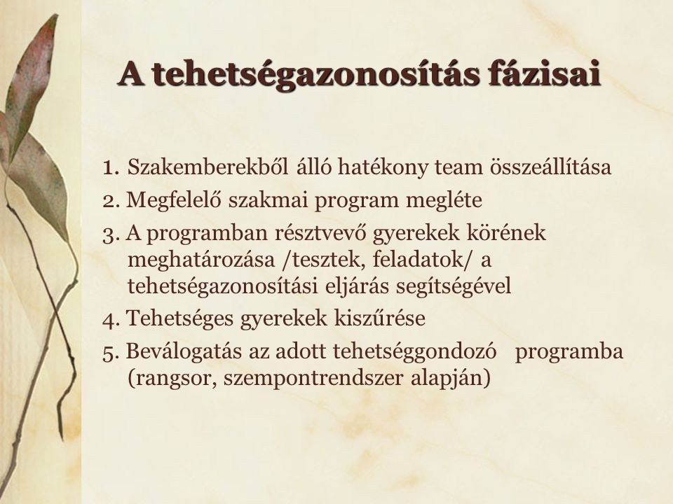 A tehetségazonosítás fázisai 1. Szakemberekből álló hatékony team összeállítása 2. Megfelelő szakmai program megléte 3. A programban résztvevő gyereke