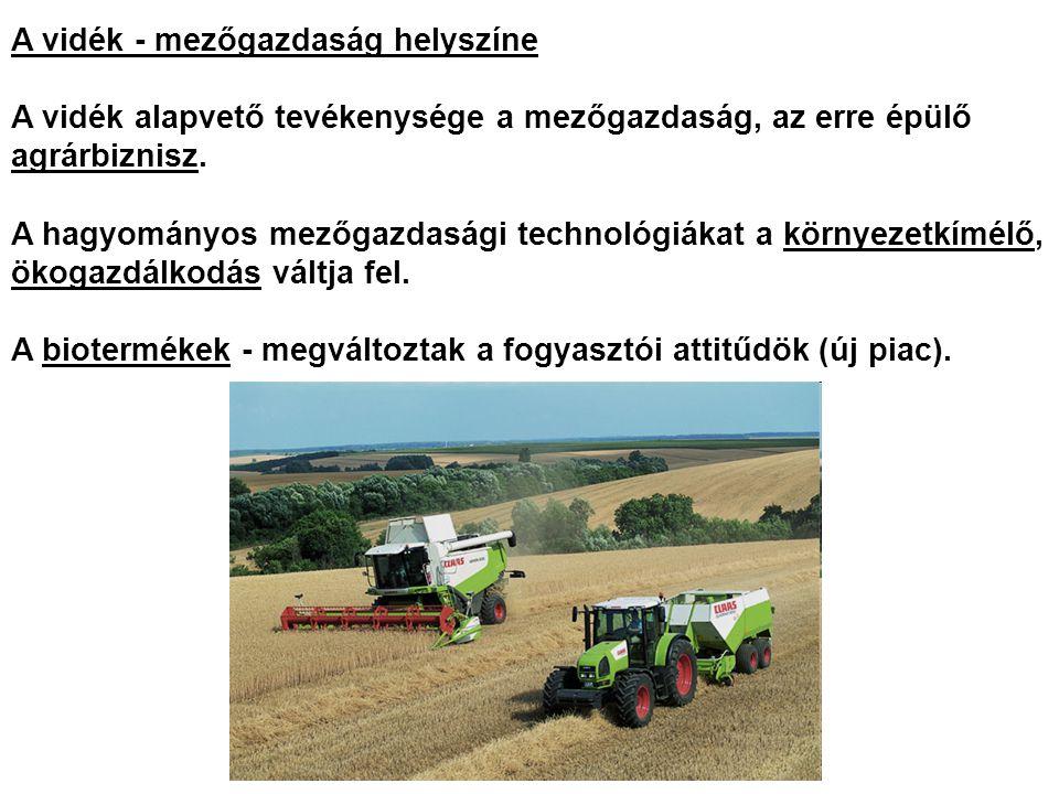 A vidék - mezőgazdaság helyszíne A vidék alapvető tevékenysége a mezőgazdaság, az erre épülő agrárbiznisz.