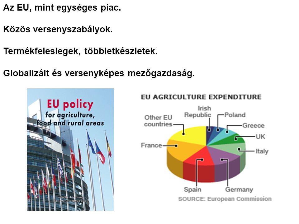 Az EU, mint egységes piac. Közös versenyszabályok.