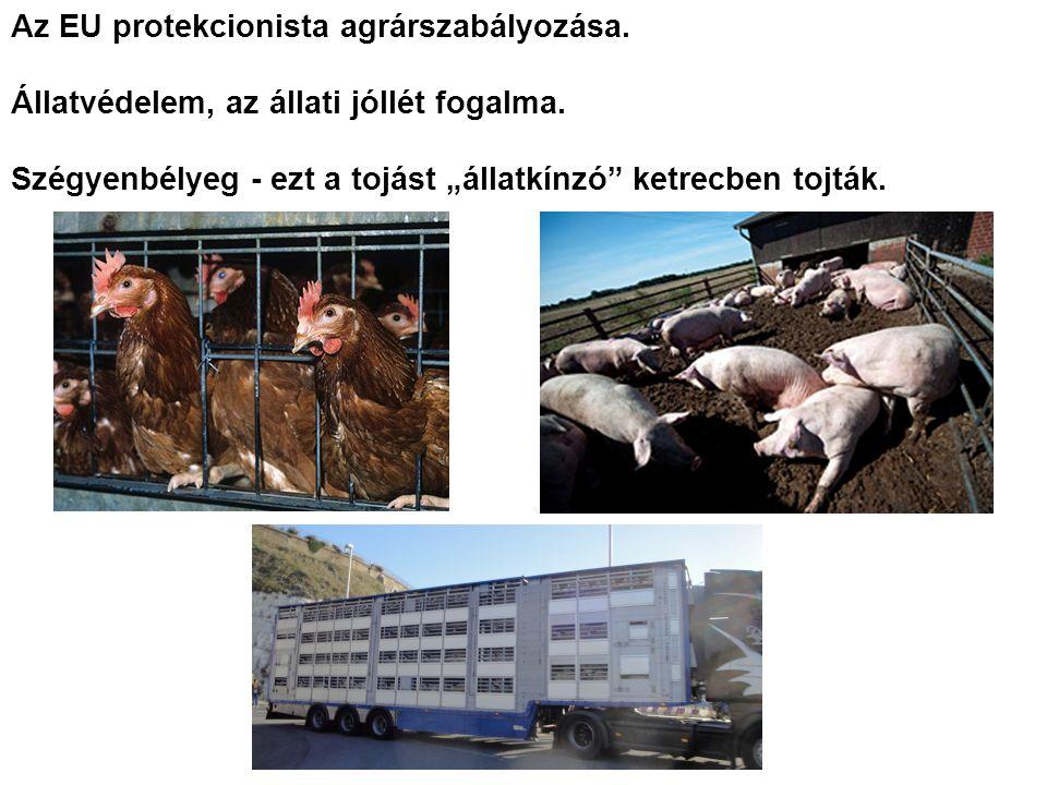 Az EU protekcionista agrárszabályozása. Állatvédelem, az állati jóllét fogalma.