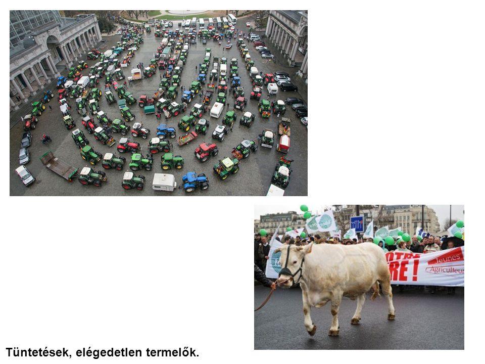 Tüntetések, elégedetlen termelők.