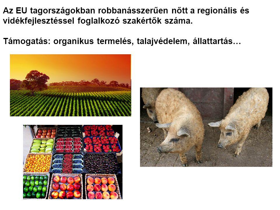 Az EU tagországokban robbanásszerűen nőtt a regionális és vidékfejlesztéssel foglalkozó szakértők száma.