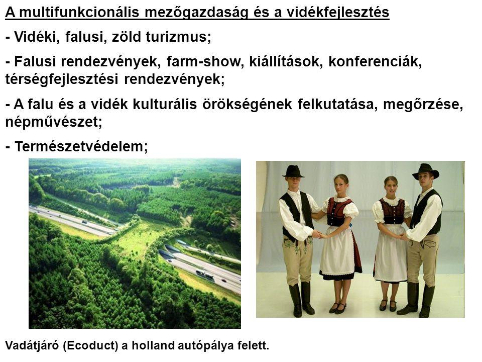 A multifunkcionális mezőgazdaság és a vidékfejlesztés - Vidéki, falusi, zöld turizmus; - Falusi rendezvények, farm-show, kiállítások, konferenciák, térségfejlesztési rendezvények; - A falu és a vidék kulturális örökségének felkutatása, megőrzése, népművészet; - Természetvédelem; Vadátjáró (Ecoduct) a holland autópálya felett.