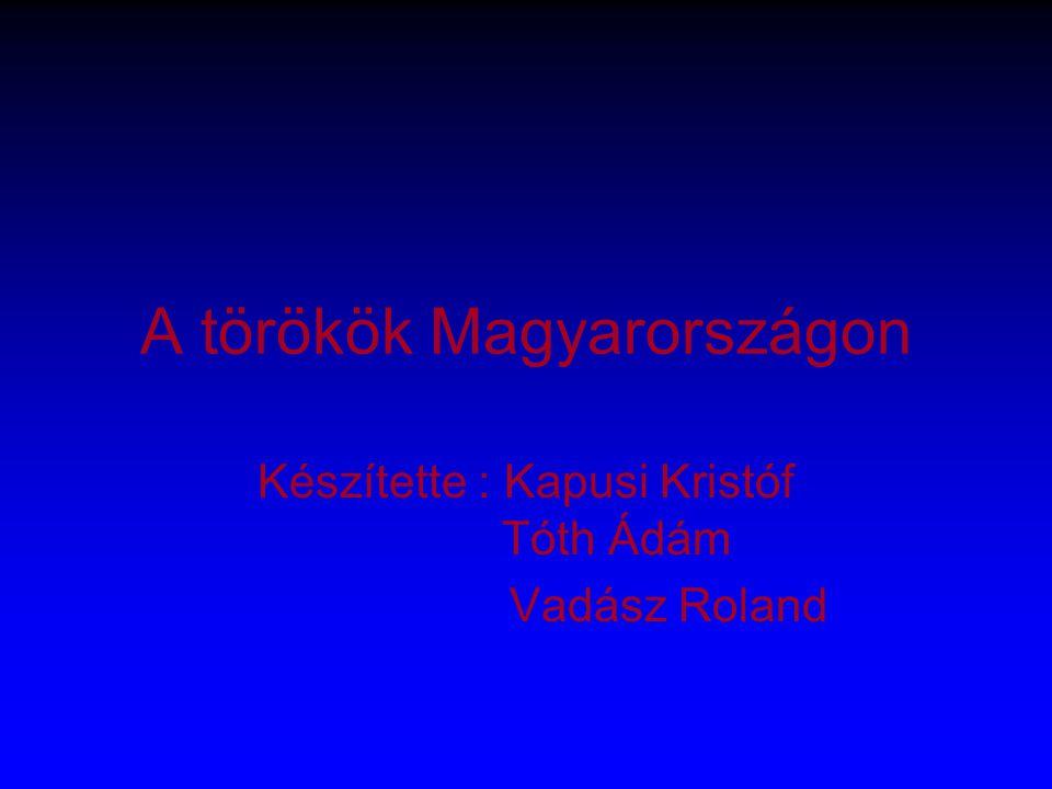 A törökök Magyarországon Készítette : Kapusi Kristóf Tóth Ádám Vadász Roland