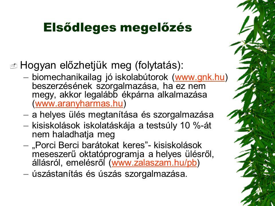 Elsődleges megelőzés  Hogyan előzhetjük meg (folytatás): –biomechanikailag jó iskolabútorok (www.gnk.hu) beszerzésének szorgalmazása, ha ez nem megy,