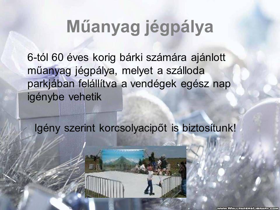 Műanyag jégpálya 6-tól 60 éves korig bárki számára ajánlott műanyag jégpálya, melyet a szálloda parkjában felállítva a vendégek egész nap igénybe vehetik Igény szerint korcsolyacipőt is biztosítunk!