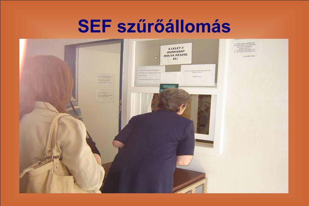 SEF szűrőállomás