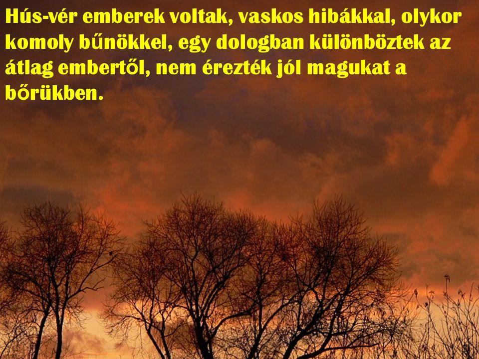 Az élet igazi csodái állnak el ő ttünk: Péter, Zakeus, Máté, Magdolna, a szamariai asszony stb.