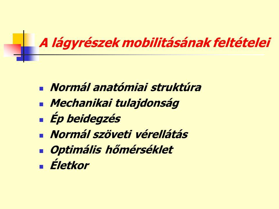 A lágyrészek mobilitásának feltételei  Normál anatómiai struktúra  Mechanikai tulajdonság  Ép beidegzés  Normál szöveti vérellátás  Optimális hőm
