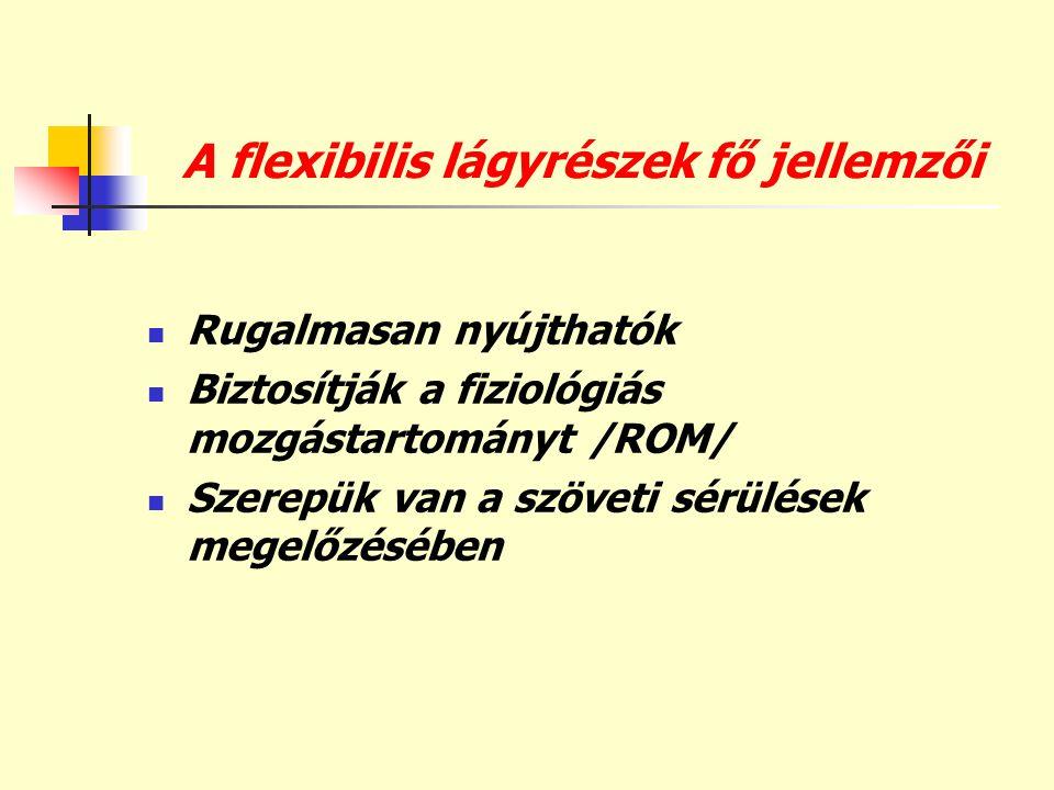 A flexibilis lágyrészek fő jellemzői  Rugalmasan nyújthatók  Biztosítják a fiziológiás mozgástartományt /ROM/  Szerepük van a szöveti sérülések meg