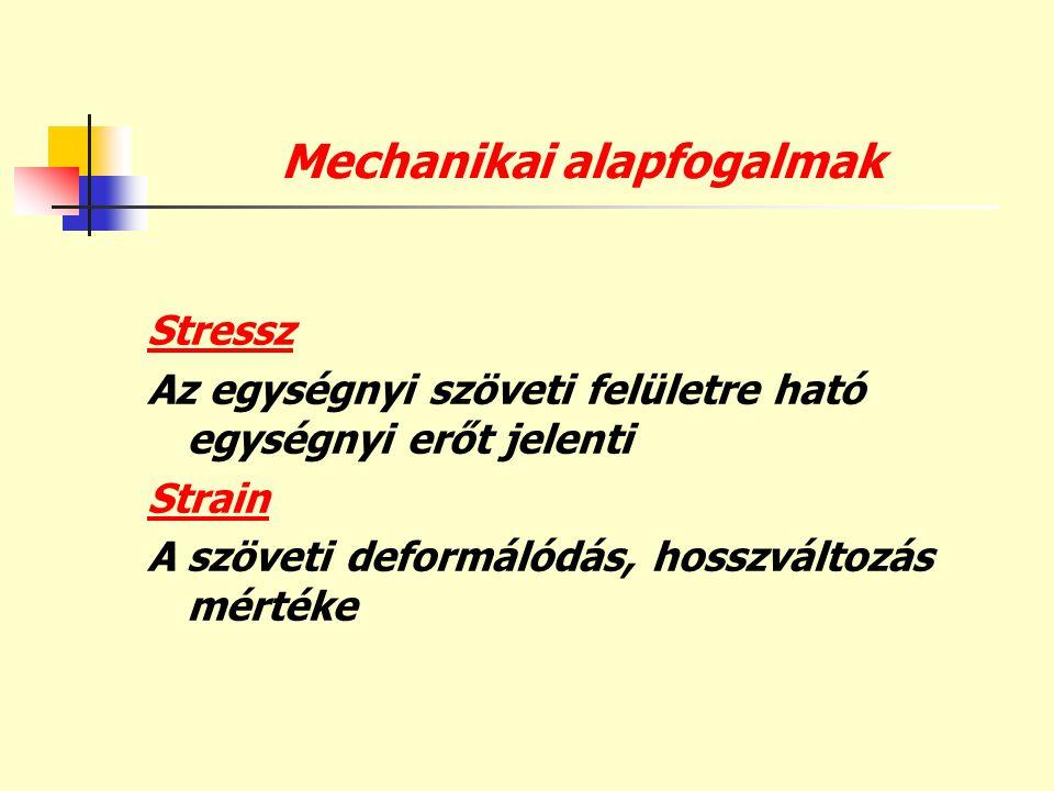 Mechanikai alapfogalmak Stressz Az egységnyi szöveti felületre ható egységnyi erőt jelenti Strain A szöveti deformálódás, hosszváltozás mértéke