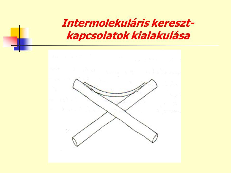 Intermolekuláris kereszt- kapcsolatok kialakulása
