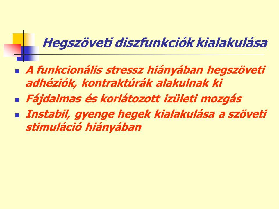 Hegszöveti diszfunkciók kialakulása  A funkcionális stressz hiányában hegszöveti adhéziók, kontraktúrák alakulnak ki  Fájdalmas és korlátozott izüle