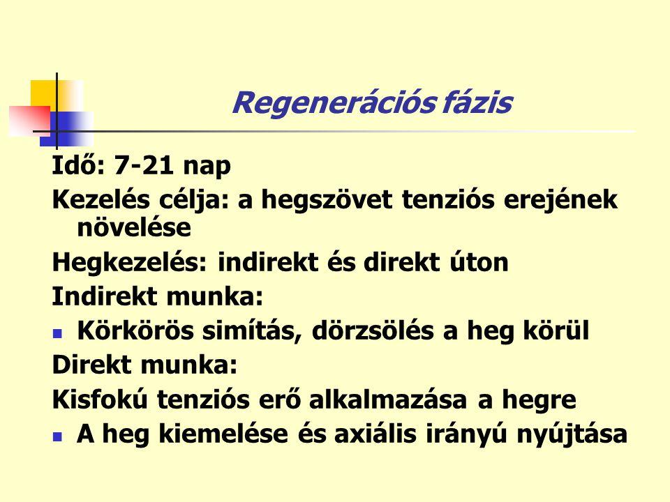 Regenerációs fázis Idő: 7-21 nap Kezelés célja: a hegszövet tenziós erejének növelése Hegkezelés: indirekt és direkt úton Indirekt munka:  Körkörös s