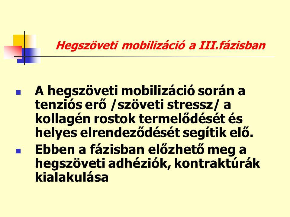 Hegszöveti mobilizáció a III.fázisban  A hegszöveti mobilizáció során a tenziós erő /szöveti stressz/ a kollagén rostok termelődését és helyes elrend