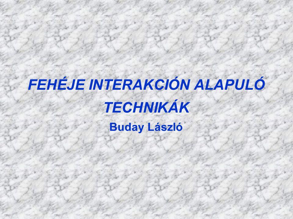 FEHÉJE INTERAKCIÓN ALAPULÓ TECHNIKÁK Buday László