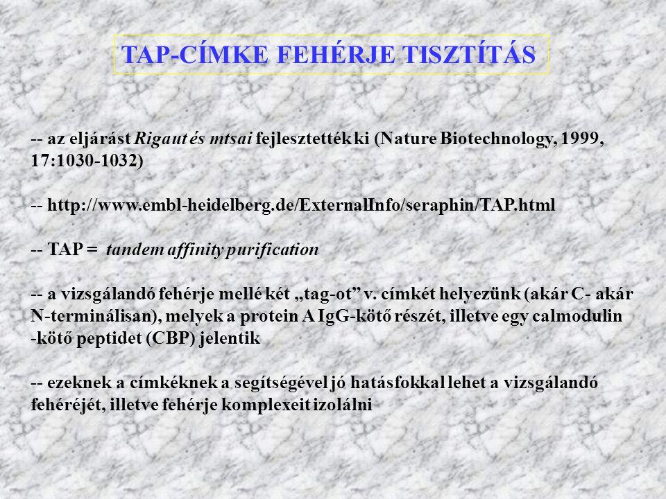 TAP-CÍMKE FEHÉRJE TISZTÍTÁS -- az eljárást Rigaut és mtsai fejlesztették ki (Nature Biotechnology, 1999, 17:1030-1032) -- http://www.embl-heidelberg.d