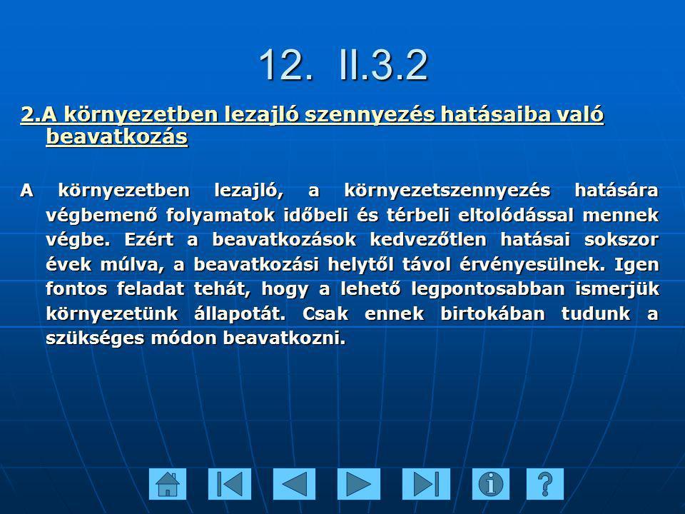 12. II.3.2 2.A környezetben lezajló szennyezés hatásaiba való beavatkozás A környezetben lezajló, a környezetszennyezés hatására végbemenő folyamatok