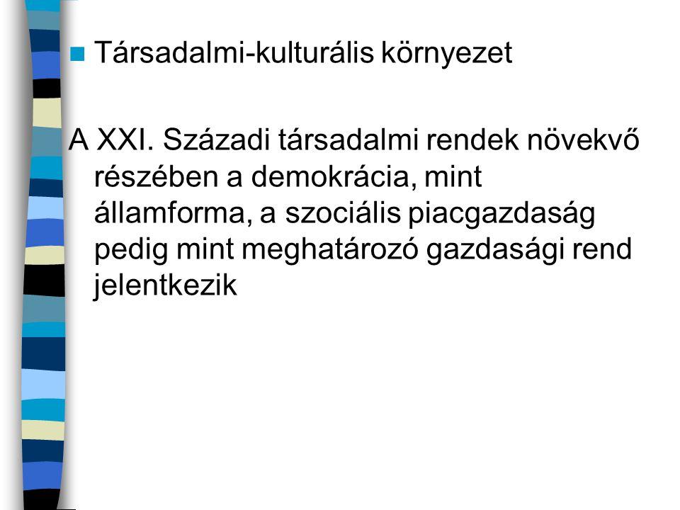  Társadalmi-kulturális környezet A XXI.