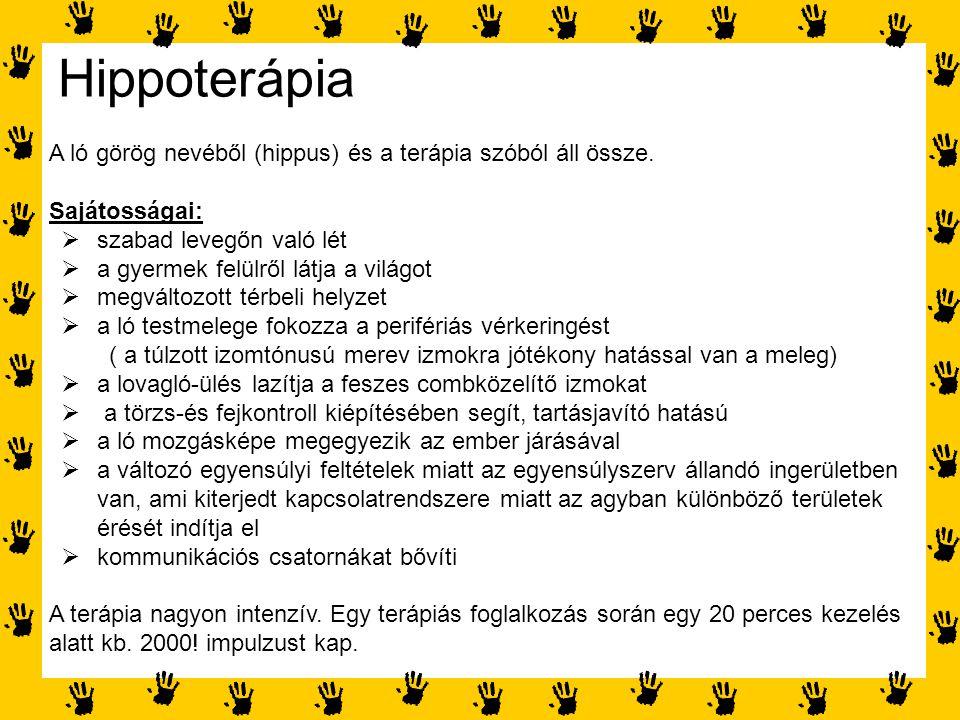 Hippoterápia A ló görög nevéből (hippus) és a terápia szóból áll össze. Sajátosságai:  szabad levegőn való lét  a gyermek felülről látja a világot 