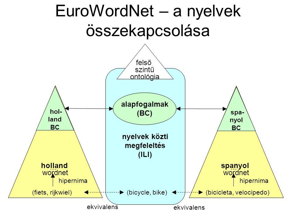 WordNet Cél –a szótár és a tezaurusz (szinonímatár) funkciók kombinálásával intuitíven jól használható nyelvi lexikon létrehozása, –támogatni az automatikus szövegelemzést és a mesterségesintelligencia-alkalmazásokat Megközelítés –A szavakat szinonímacsoportokba (synset) szervezi –rövid, általános meghatározásokat ad rájuk, –rögzíti a szinonímacsoportok közti jelentéshordozó (szemantikus) kapcsolatokat.